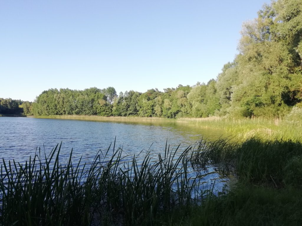 Surroundings view with a lake